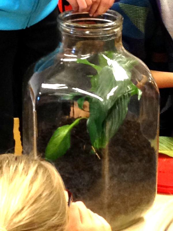 """Arbetet med tema """"Framtiden energi"""" började med Naturskolans besök hos tre klasser där barnene diskuterade och lärde sig om energi. Sedan skrev man brev till sig själv i framtiden och svarade på frågan """"Vad är viktigt för oss i framtiden?"""""""