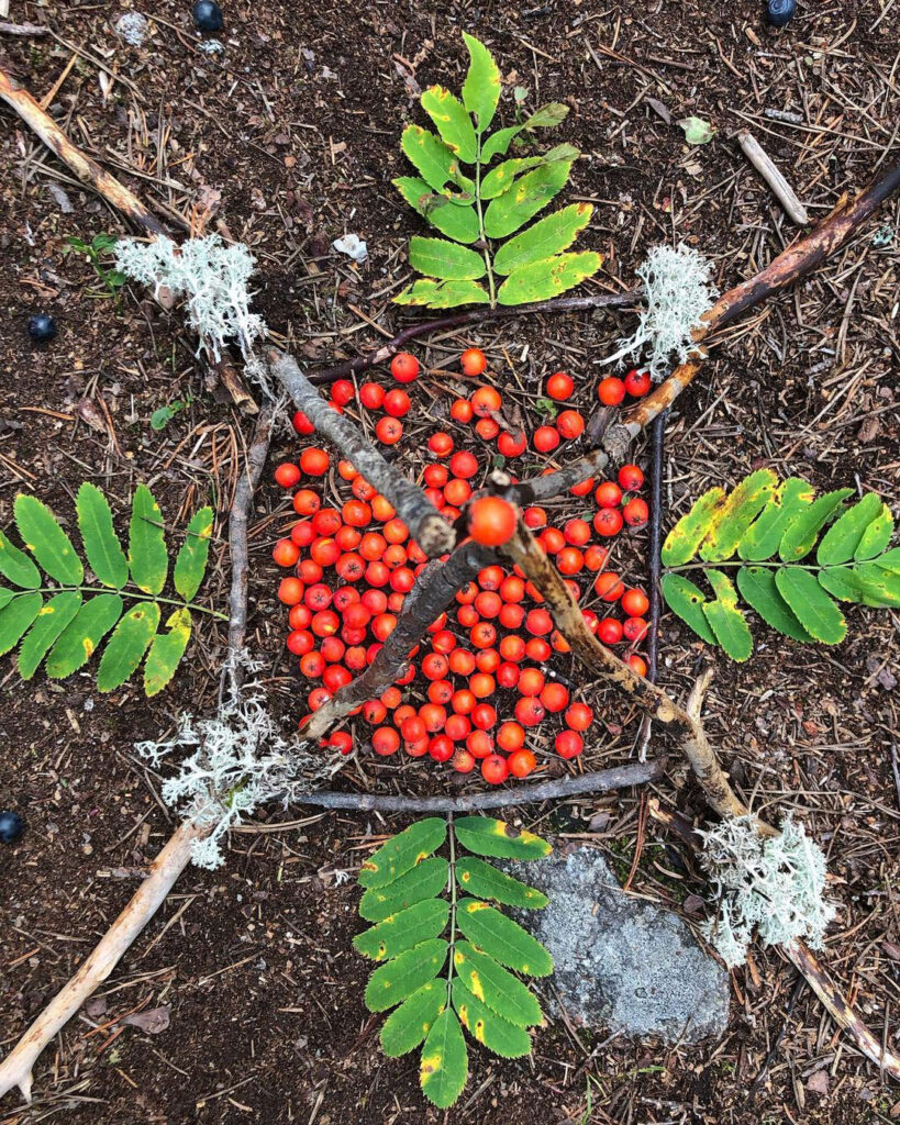 Löv, pinnar och bär bildar mönster